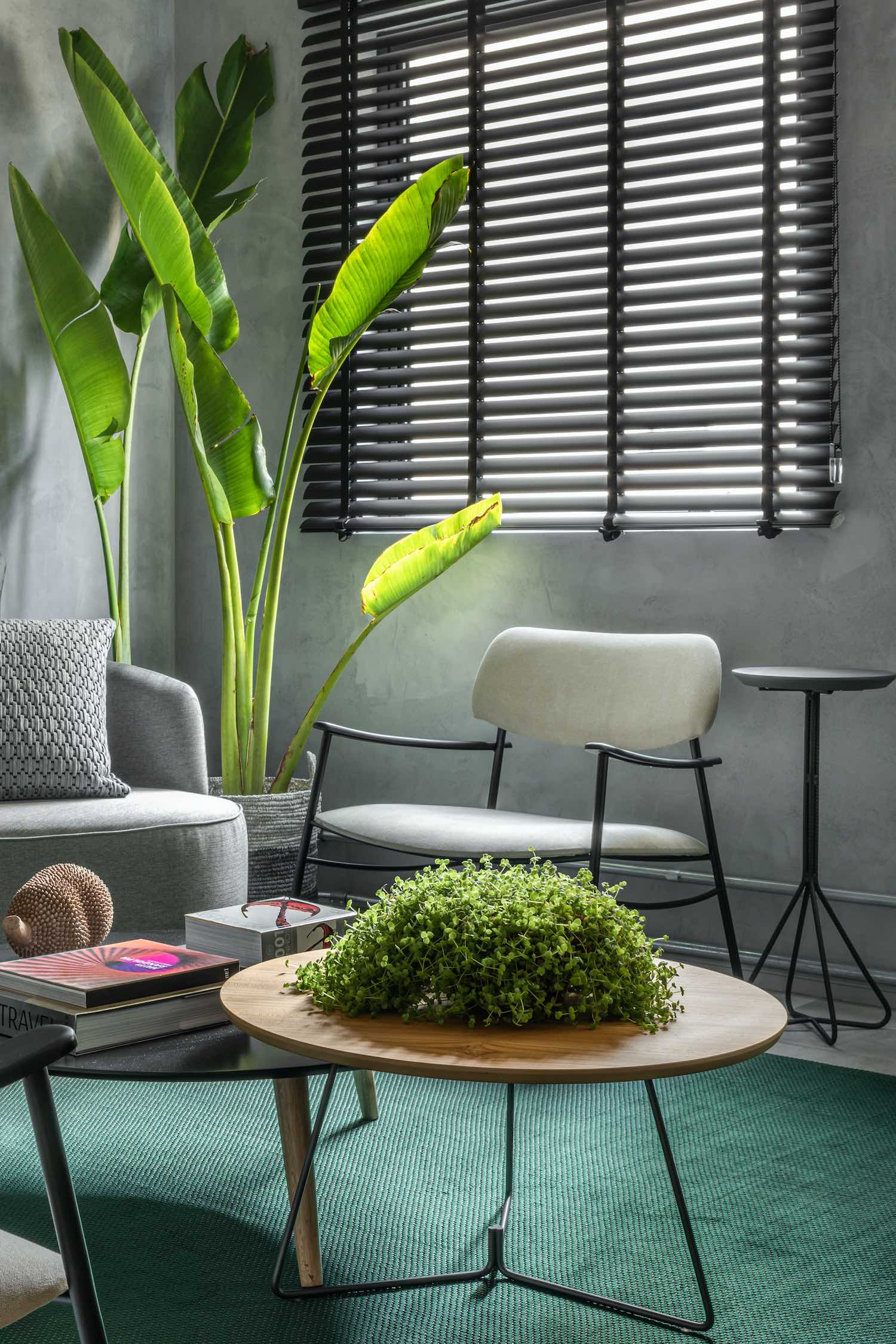 green plant on above circular wooden table