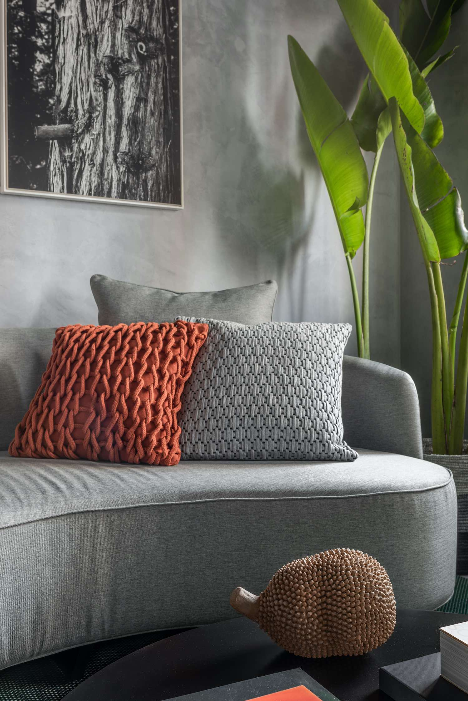 grey and red cushions on the sofa