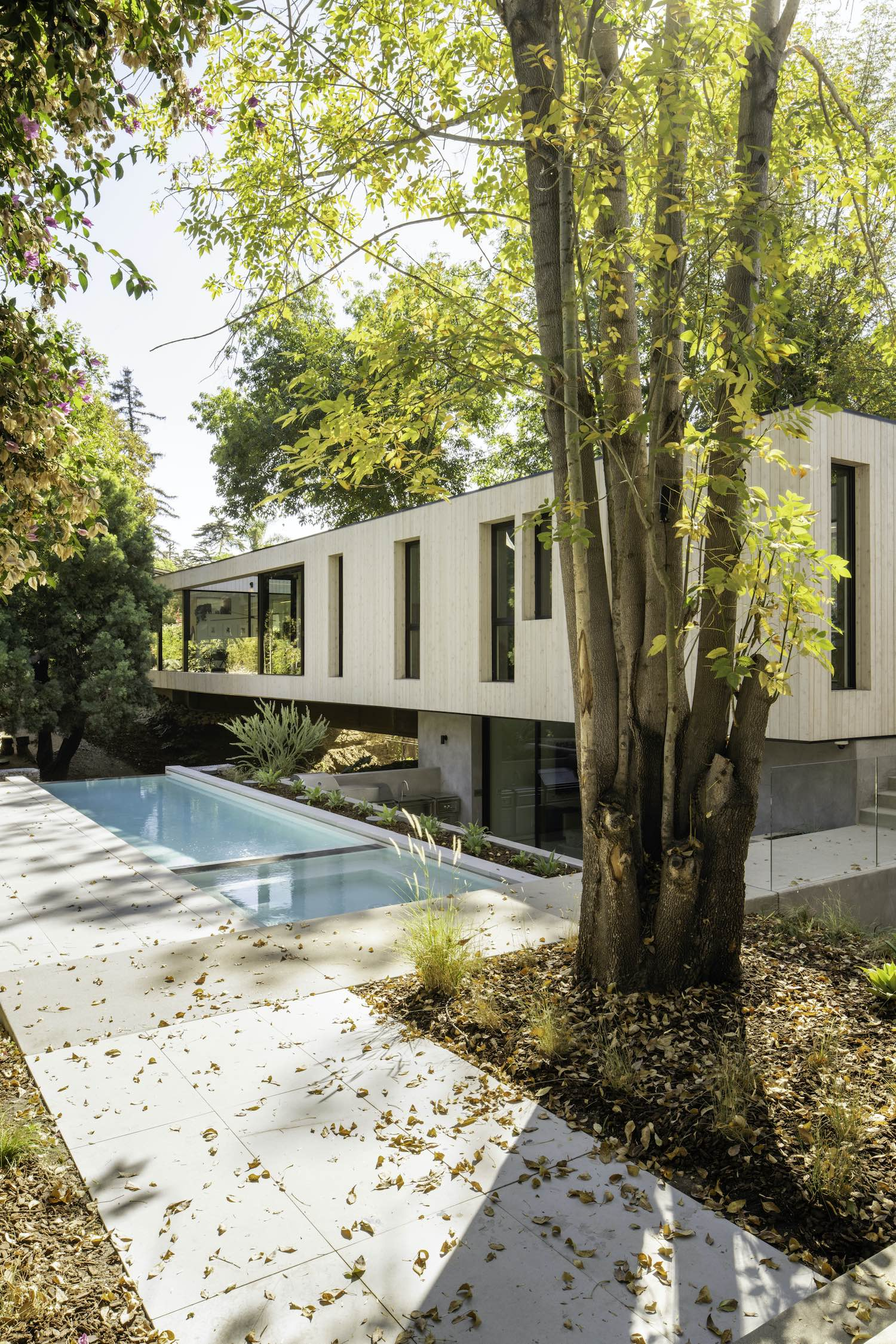 house with pool surrounded with trees