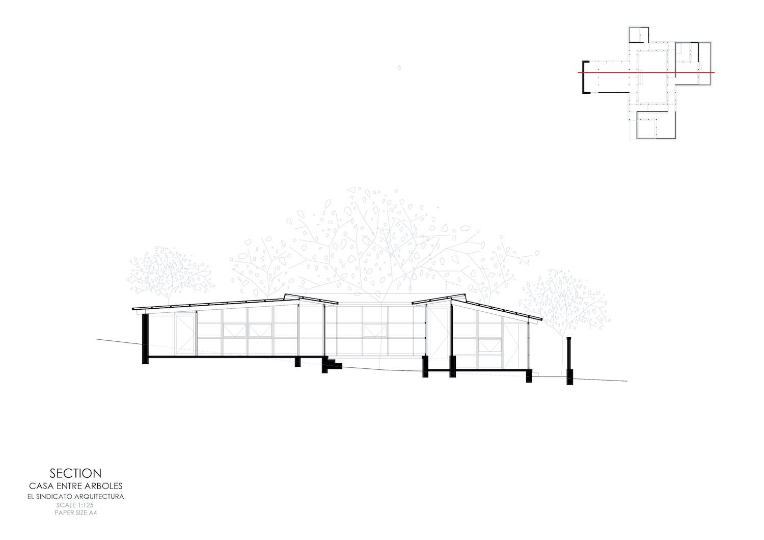 architectural drawing for section