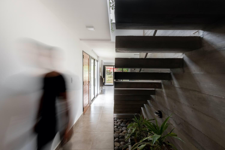 indoor garden located under stairs