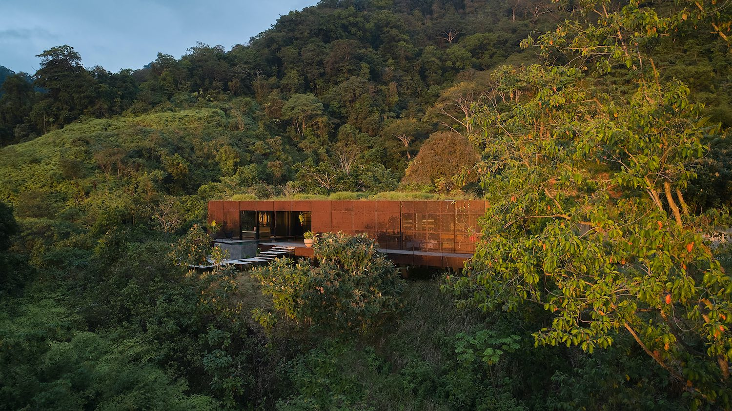 a house with vegetation on roof in the middle of tropical rain forest