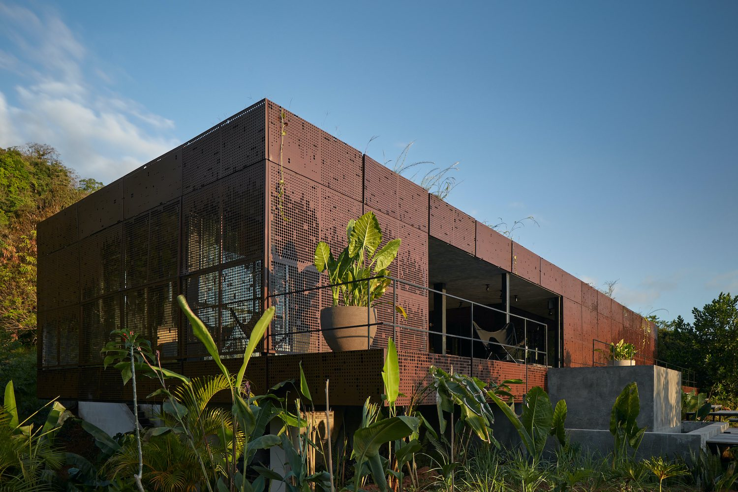 metallic house surrounded with green plants