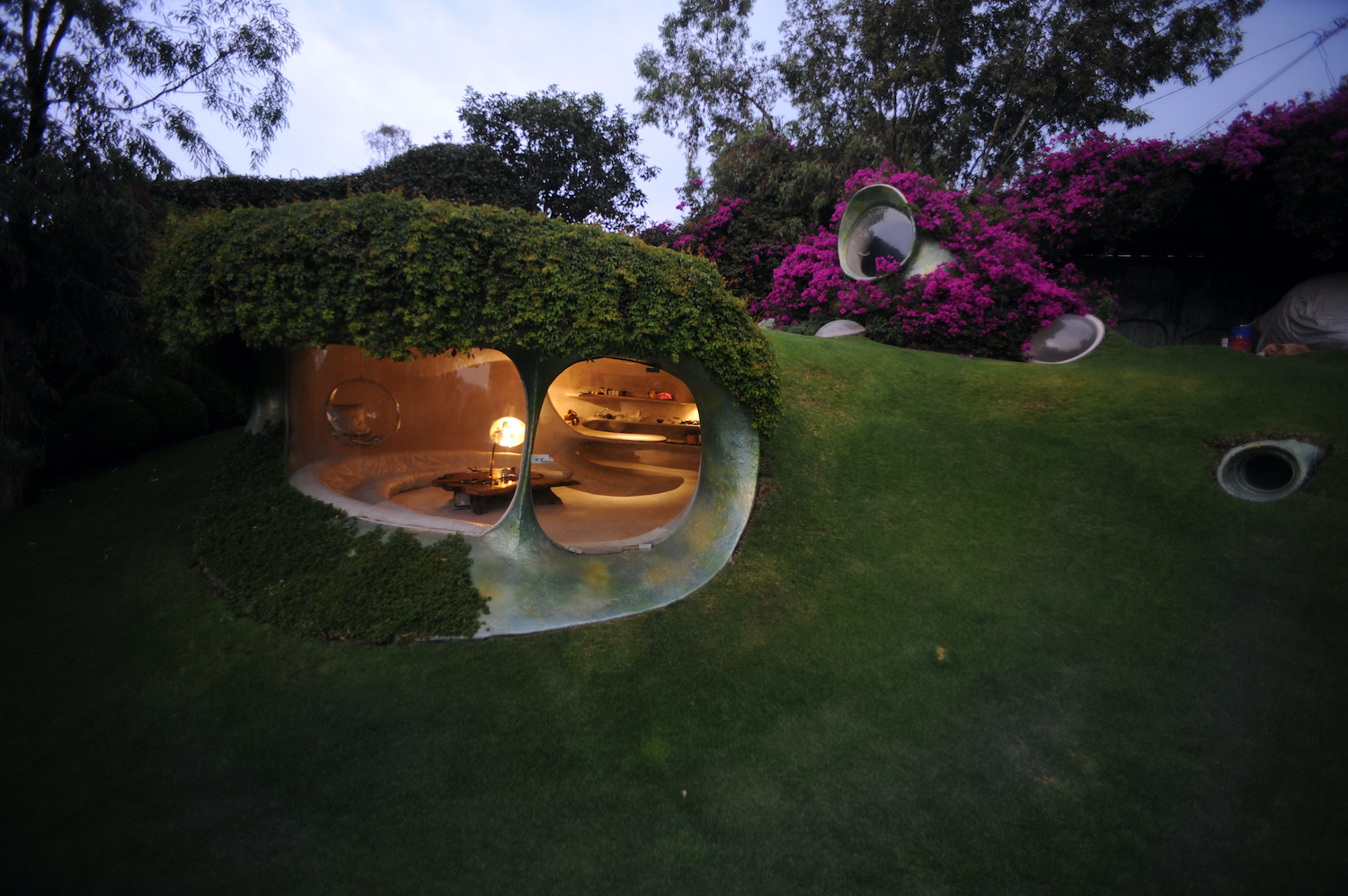 organic home in the shape of nutshell surrounded with green plants