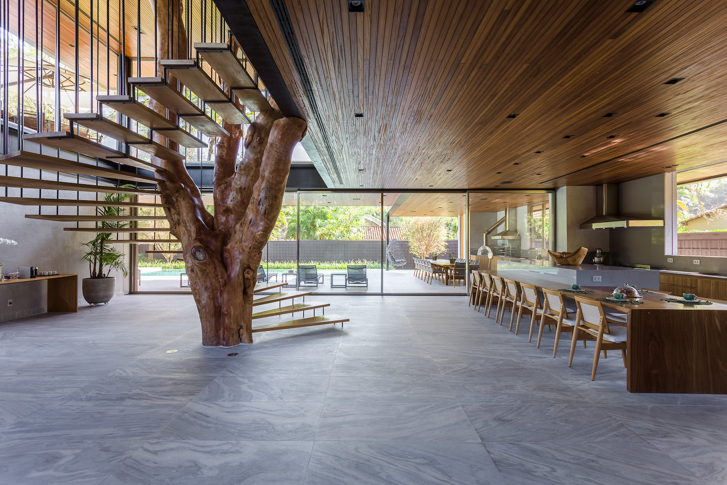 spiral wooden staircase around a tree that grown inside the house