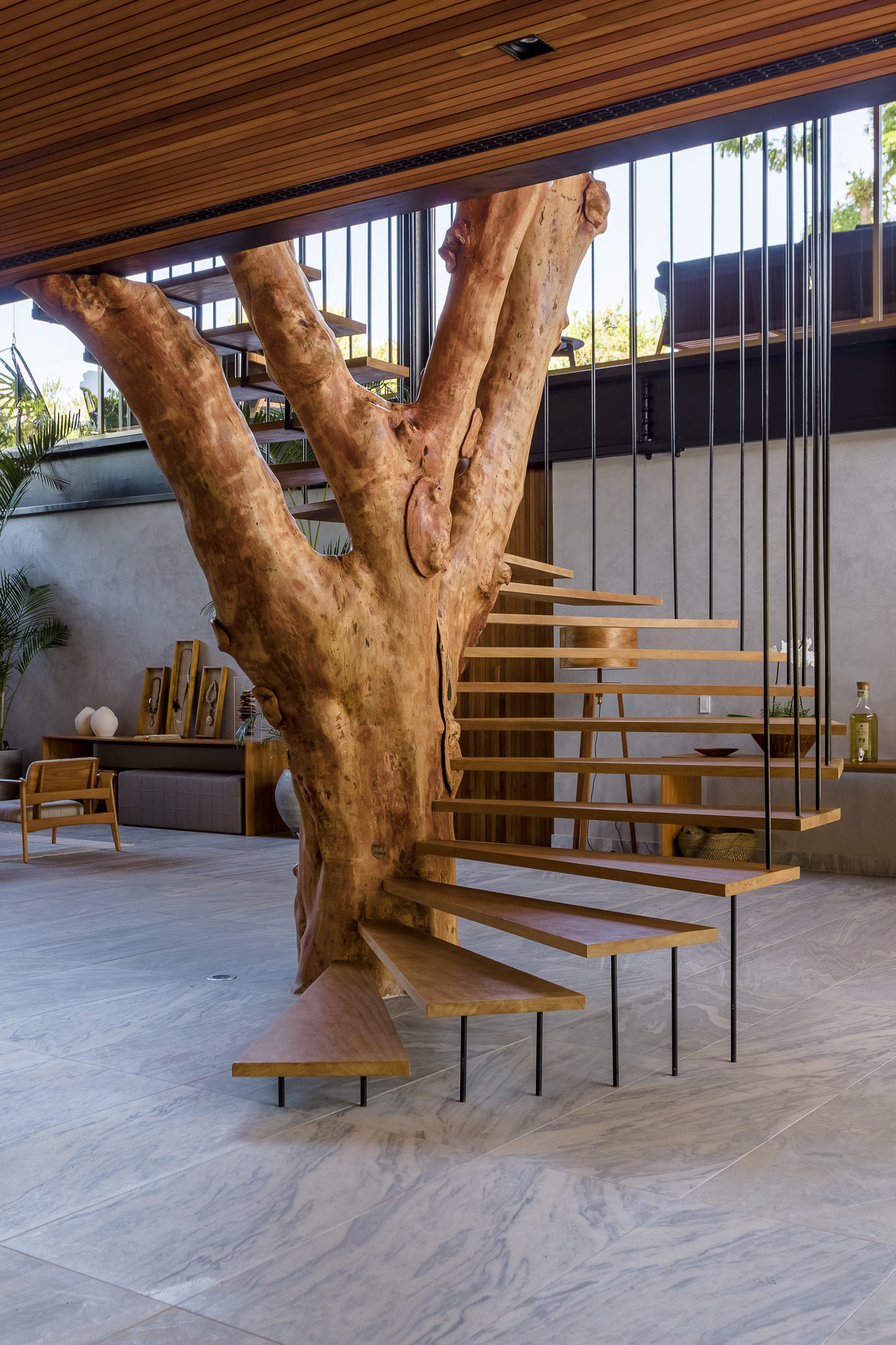staircase with wooden steps around an old tree