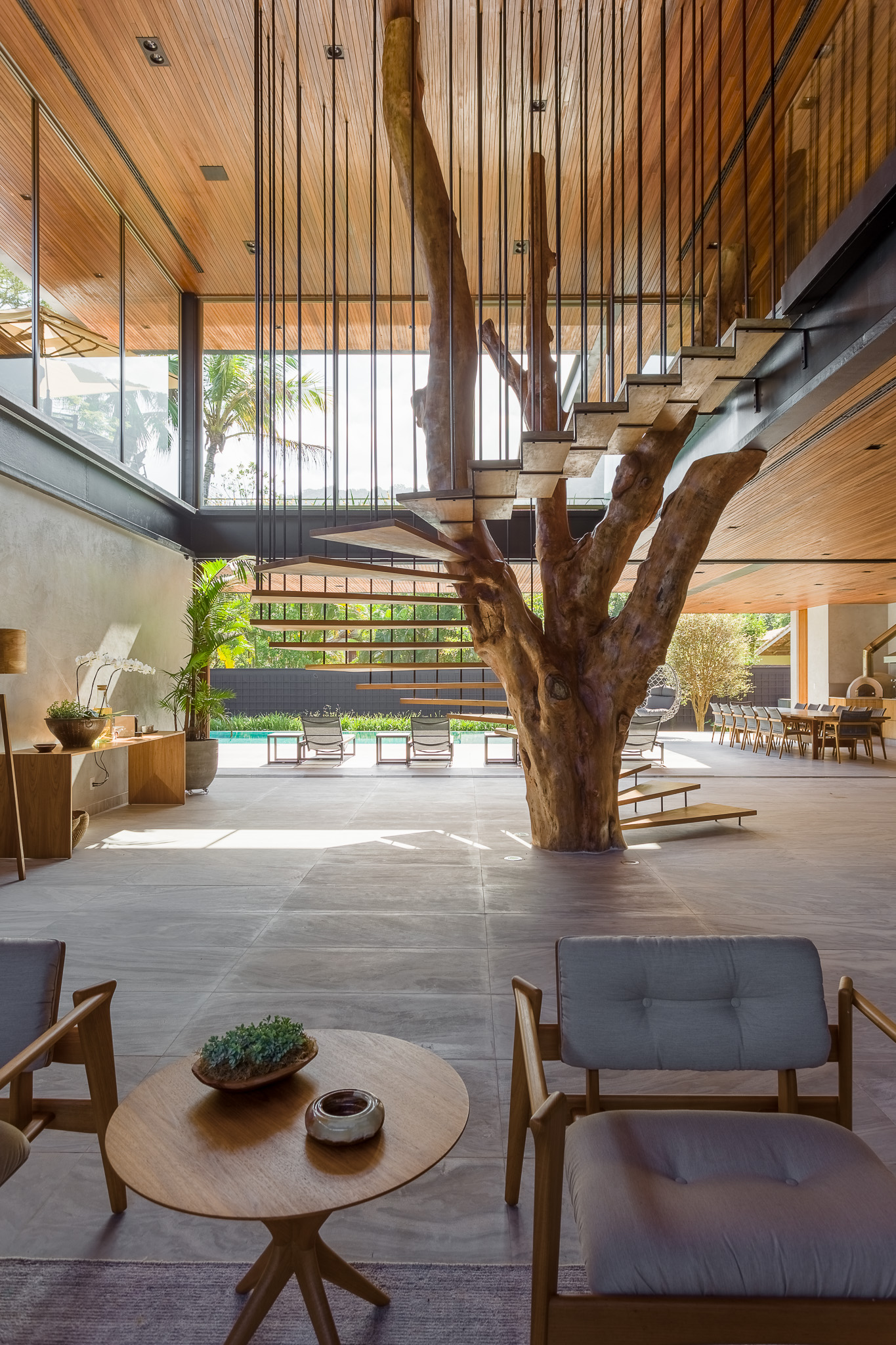 staircase design around an old tree