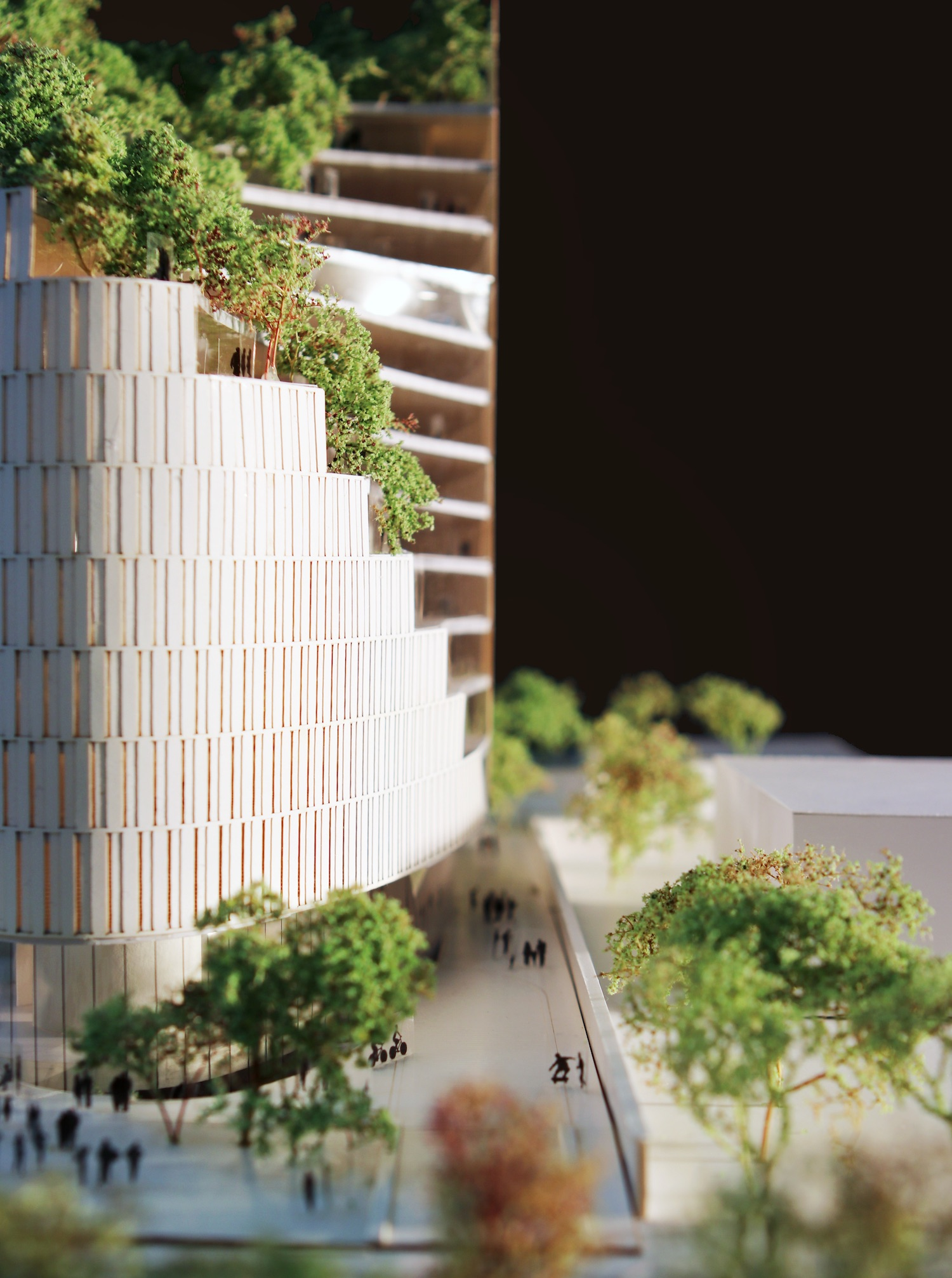 green trees used in making architectural model