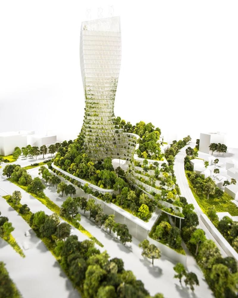architectural model of skyscraper that surrounded with trees and vegetaion