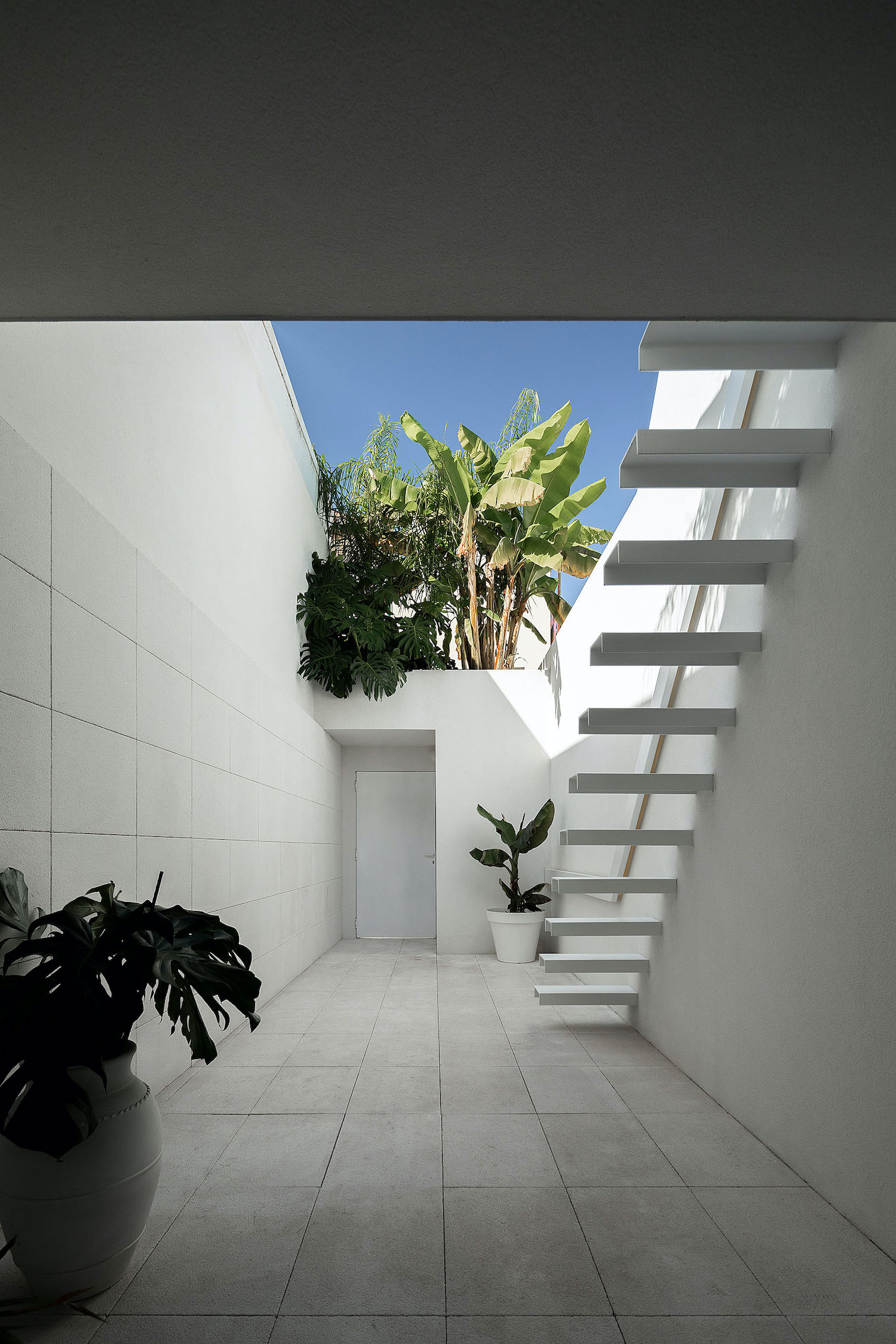 backyard of a small house with staircase and plants