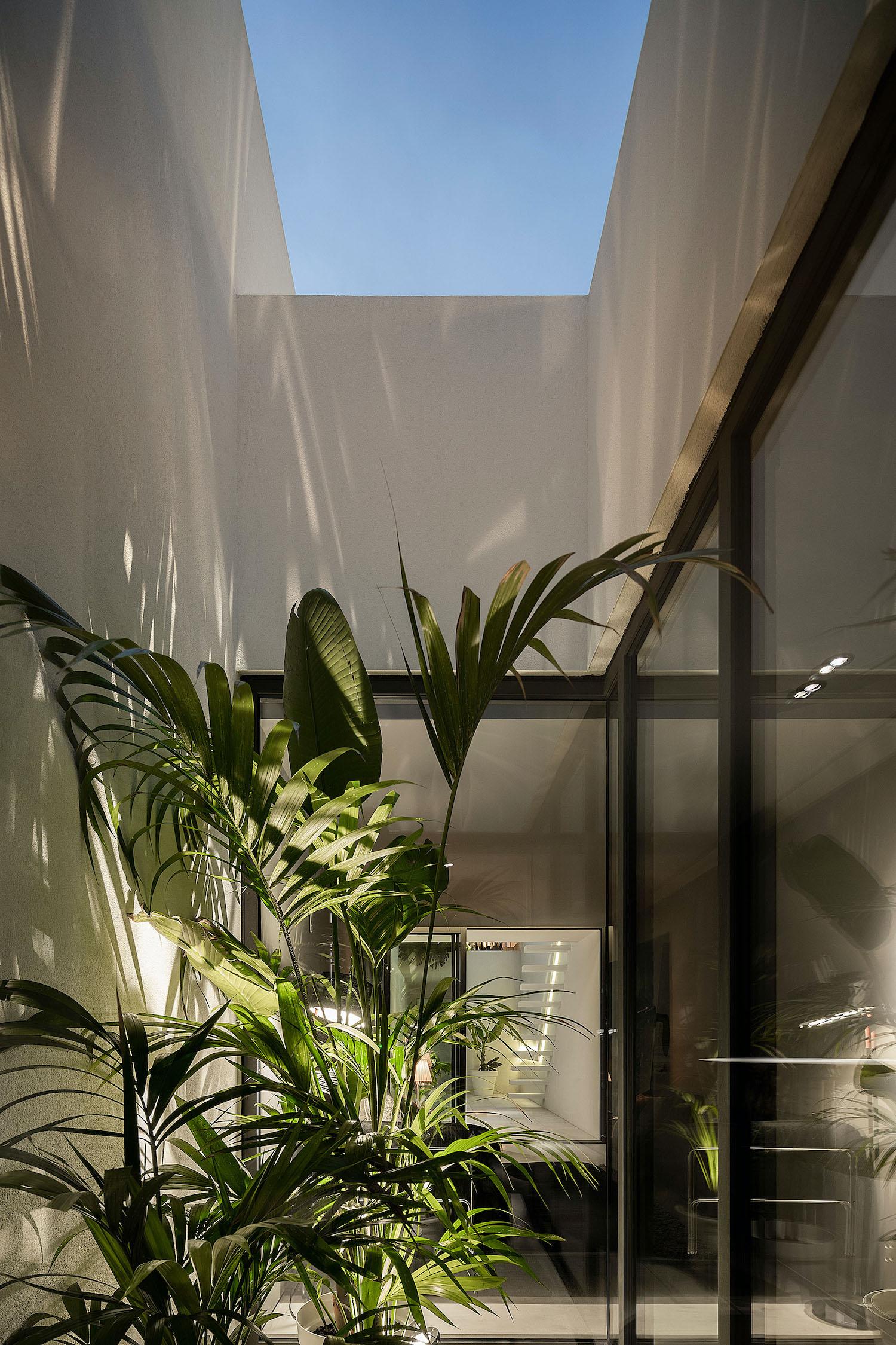 indoor garden with illumination on plants