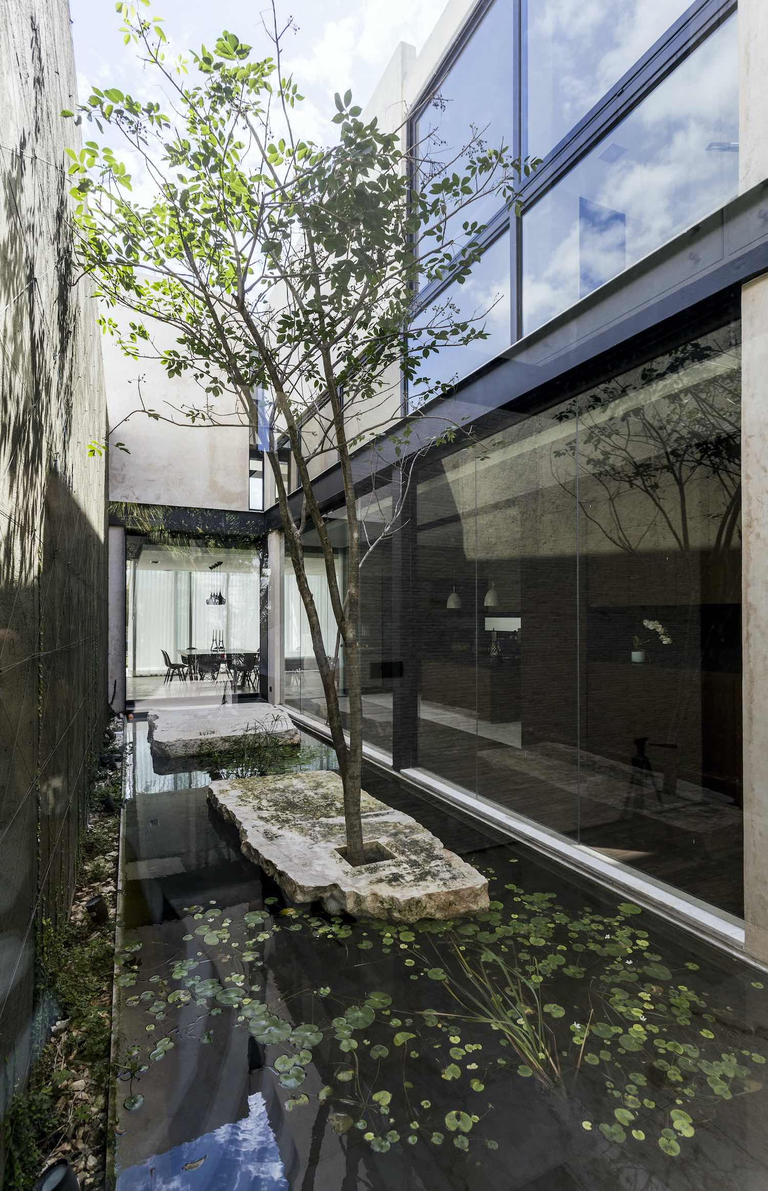 exterior of the house made of glass and stucco