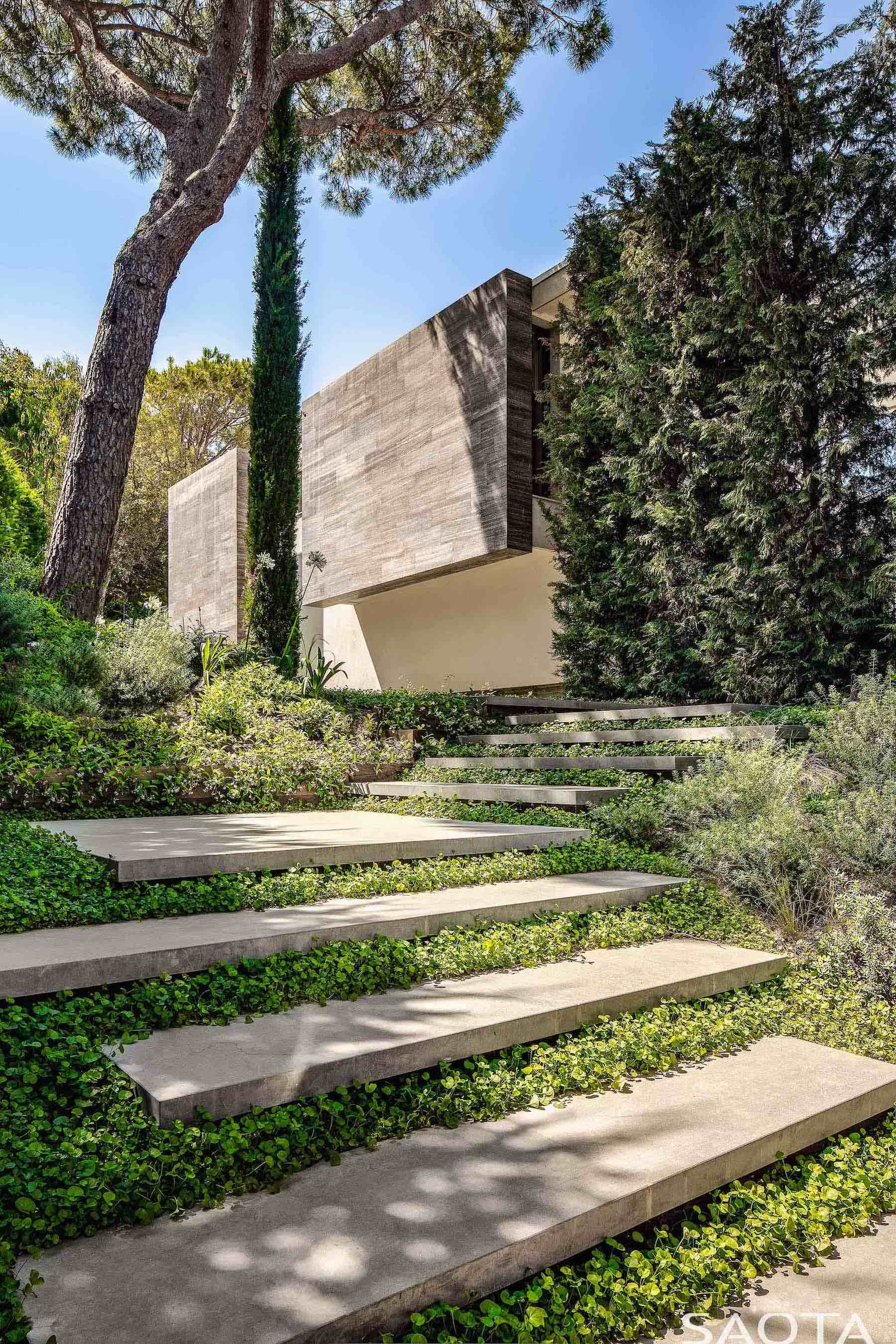 concrete steps with green grass