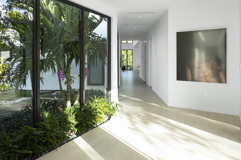 indoor courtyard with green vegetations