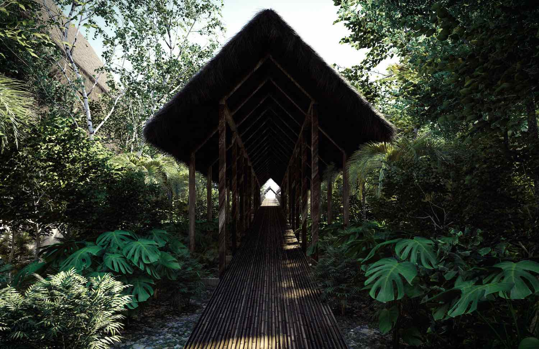 a corridor in nature