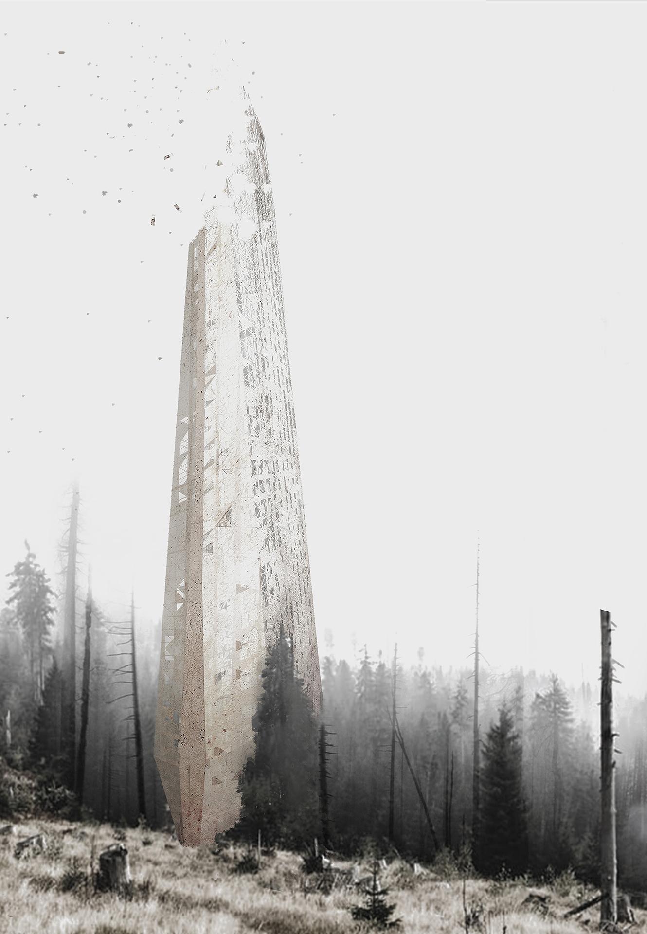 skyscraper in the woods