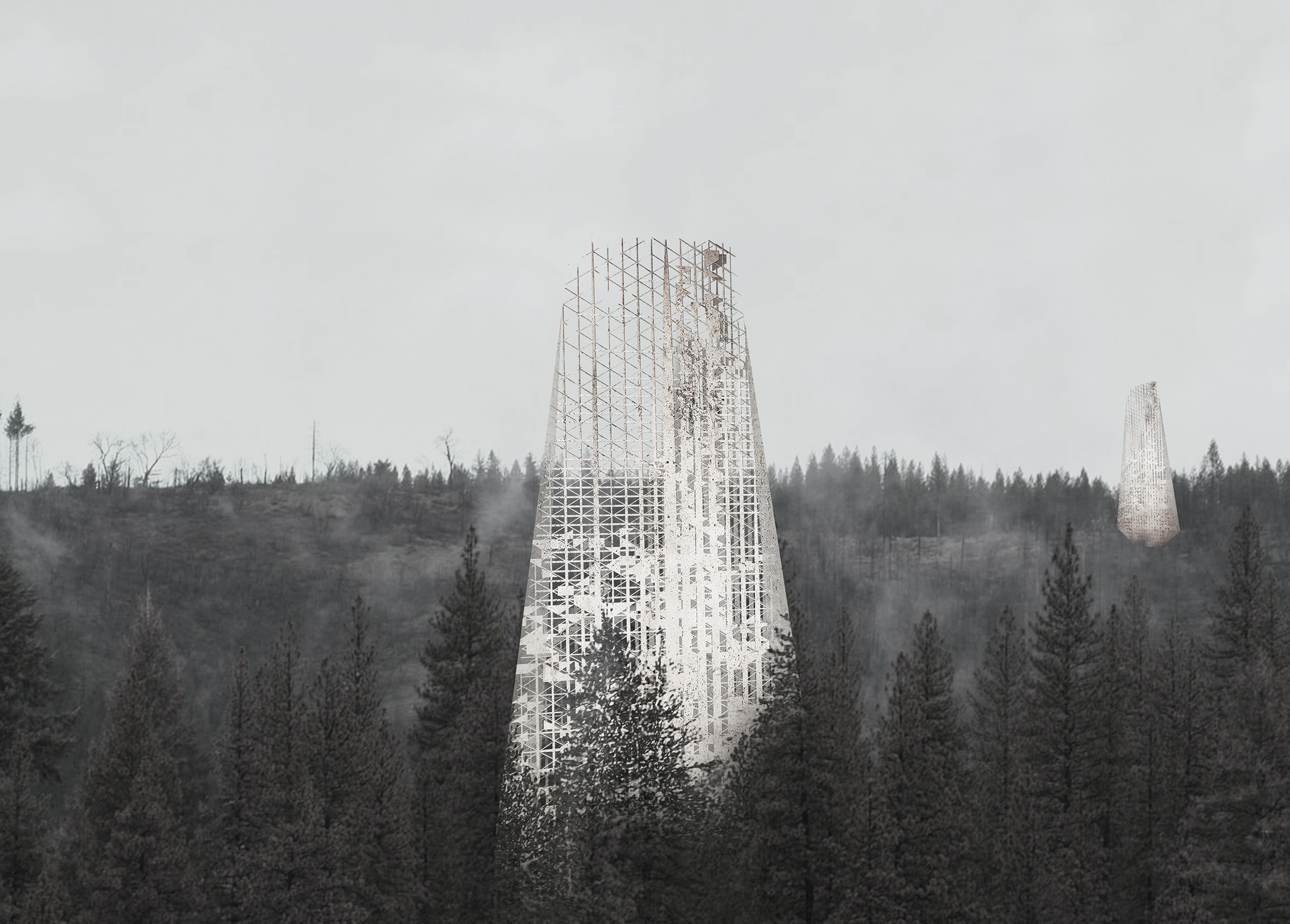 a skyscraper in the middle of forest