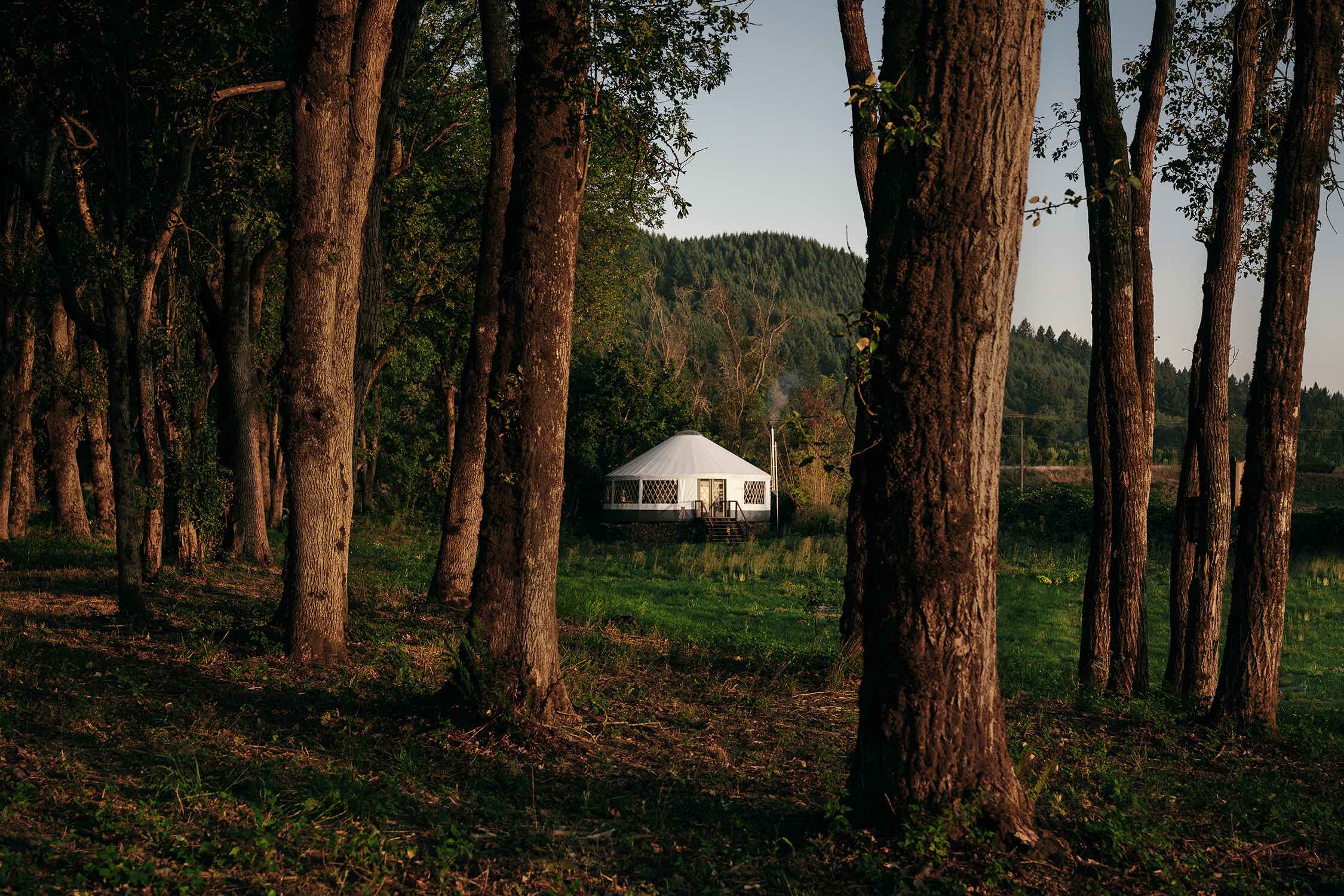 the yurt view through the trees