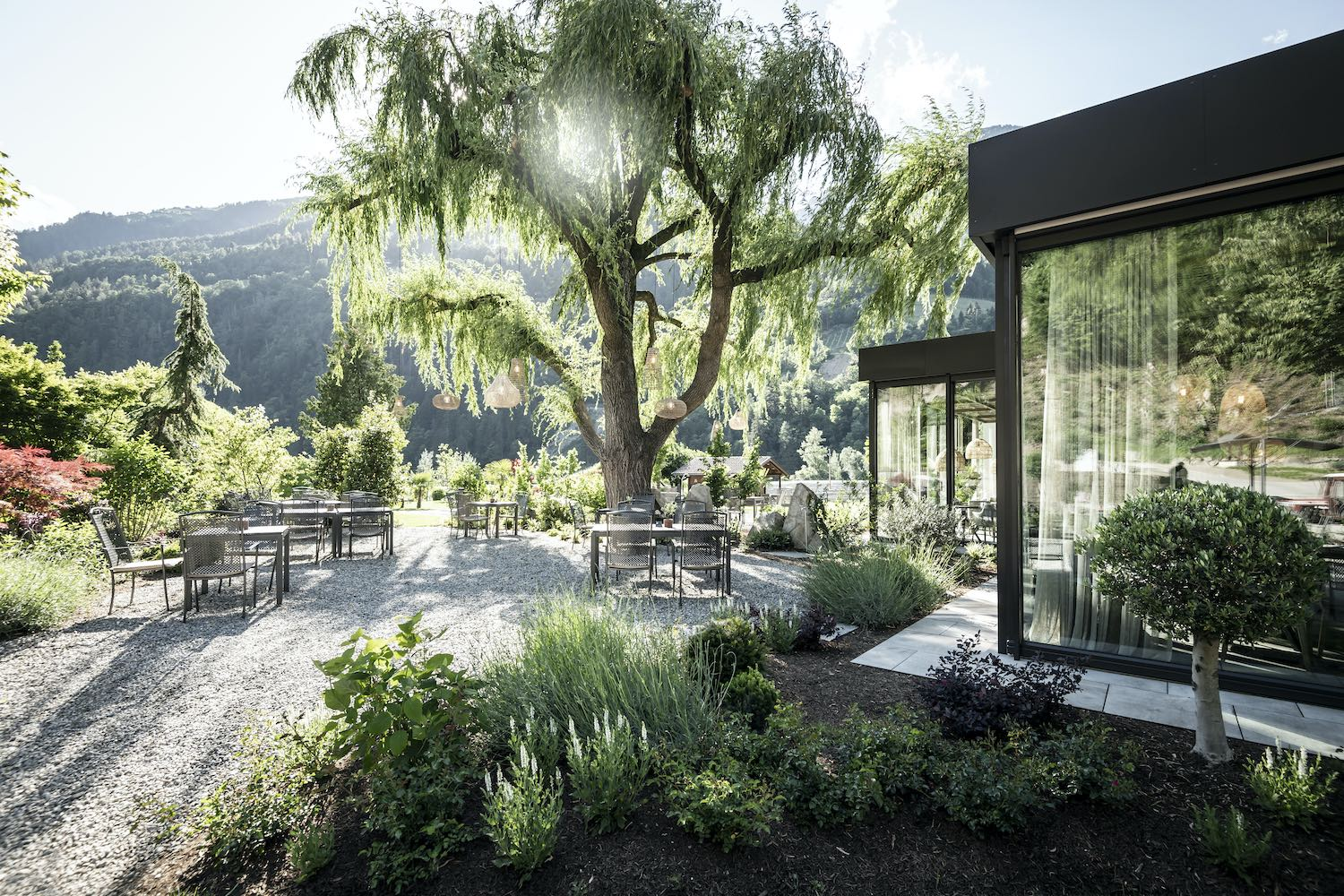 outdoor furniture and big tree